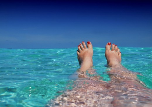 Fermeture estivale jusqu'au 22 aout 2016 inclus